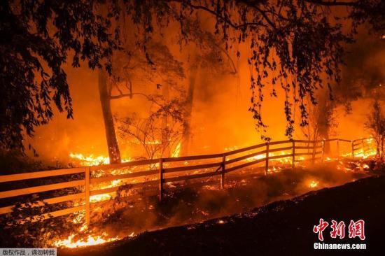 近日美國加州野火持續肆虐,加州州長紐瑟姆27日宣布全州進入緊急狀態,有數十萬人被下令撤離家園。