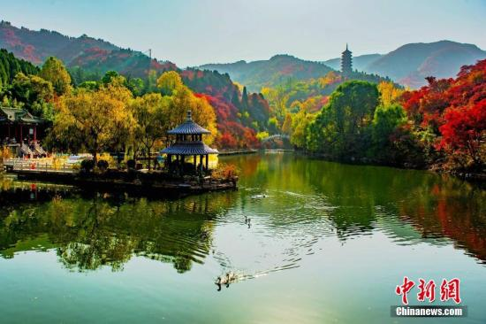 Jinan to host intangible cultural heritage expo