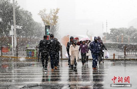 10月31日,青海大部分地区出现雨雪天气,西宁迎来深秋首场降雪。图为市民冒雪出行。<a target='_blank' href='http://www.chinanews.com/'>中新社</a>记者 马铭言 摄