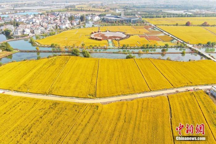 农业农村部加强转基因生物监管 建立健全档案 压实责任