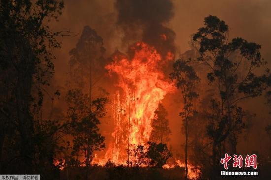 澳大利亚消防署预测天气条件将恶化,火势可能进一步蔓延,威胁更多城市地区。