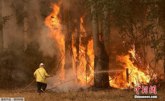 """11月12日,澳大利亚东部林火继续肆虐,最近的起火点已逼近悉尼城区,林火造成城市上空被大量烟尘笼罩。 大悉尼地区面临""""灾难级""""林火威胁。悉尼所在的新南威尔士州州长贝雷吉克利安11日宣布该州进入为期7天的紧急状态。"""