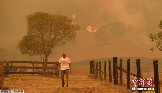 资料图:澳大利亚东部沿海地区发生大规模森林火灾。