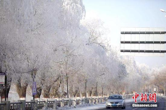 """11月20日,有著""""霧凇之都""""美譽的吉林市松花江畔出現今冬首場霧凇景觀,吸引大批市民及游人駐足觀看并拍照留念。石洪宇 攝"""