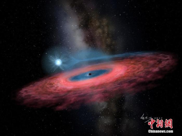 11月28日,中国科学院国家天文台在北京举行新闻发布会宣布,该台刘继峰、张昊彤研究团队依托郭守敬望远镜(LAMOST),发现一颗迄今质量最大的恒星级黑洞,并提供一种利用LAMOST巡天优势寻找黑洞的新方法。图为迄今质量最大恒星级黑洞的艺术想像图。喻京川/绘 中科院国家天文台/供图