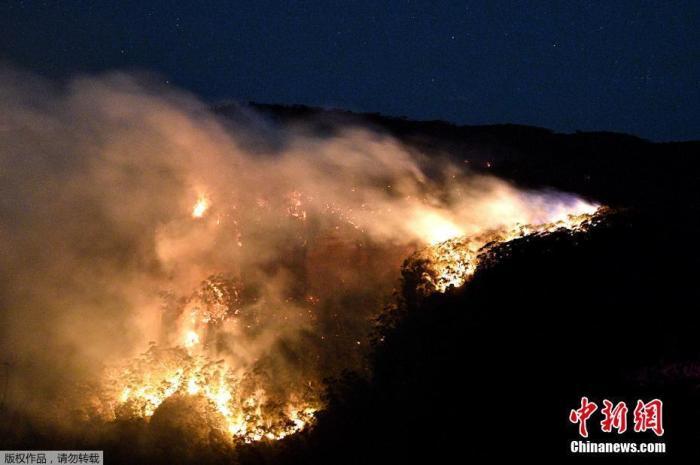 当地时间2019年12月2日,澳大利亚新南威尔士州Blue Mountains,当地林火持续肆虐。