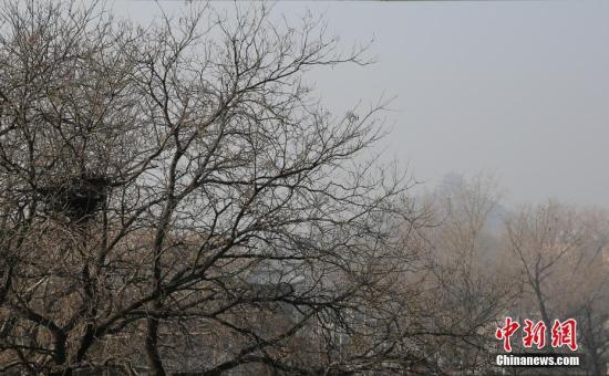 中国生态环境部:3月京津冀大气污染扩散条件整体偏差