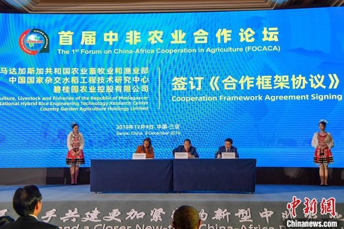 12月9日,首届中非农业合作论坛在海南三亚开幕。图为袁隆平(中)代表中国国家杂交水稻工程技术研究中心与马达加斯加农业、畜牧业和渔业部总司长法哈尼娅娜・米哈里索阿・拉哈里诺梅娜(左二),碧桂园农业公司总裁梅永红(右二)签订《合作框架协议》,将投资5000万美元在马达加斯加建设农业产业园,形成年产4000吨杂交水稻种子产能。中新社记者 骆云飞 摄