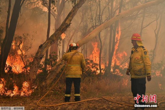 澳大利亚野火肆虐两名消防员殉职 总理缩短假期回国