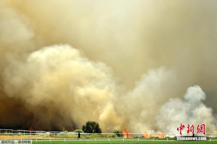 當地時間2019年12月13日,澳大利亞珀斯一板球體育場外,森林大火熊熊燃燒。圖為火場上空升起滾滾濃煙。