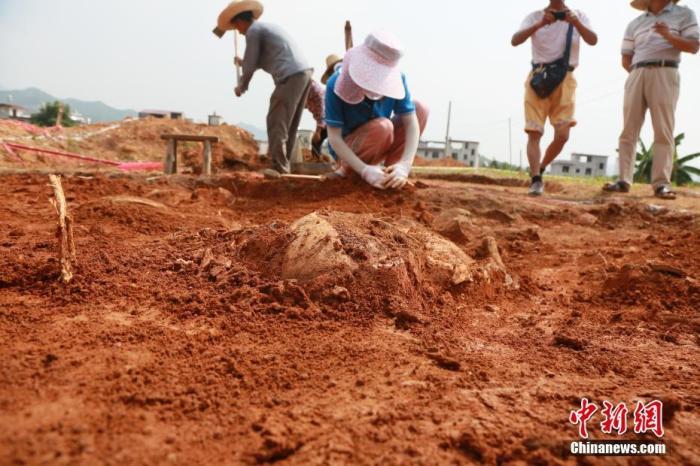 资料图:考古人员进行发掘工作。中新社发 吴寿生 摄