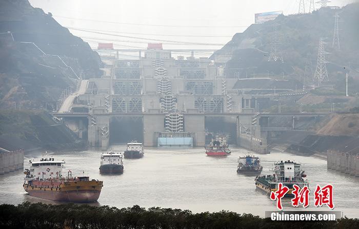长江流域重点水域常年禁捕 为什么禁捕迫在眉睫?