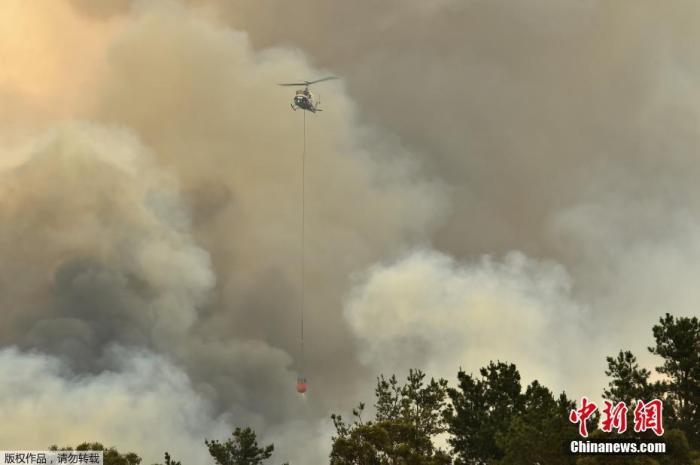 资料图:当地时间12月21日,澳大利亚悉尼西南部Bargo的房屋附近发生森林大火。当日,澳大利亚灼热的热浪加剧了部分地区的森林大火蔓延,悉尼周边失控的林火进一步恶化。