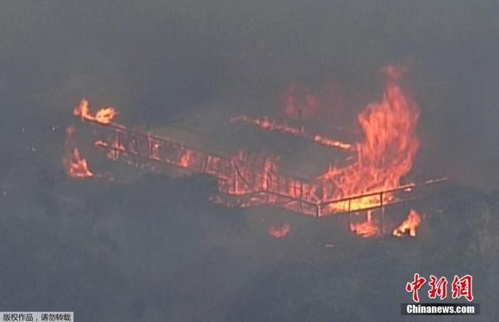 目前,肆虐澳大利亚的山火已经持续4个月。