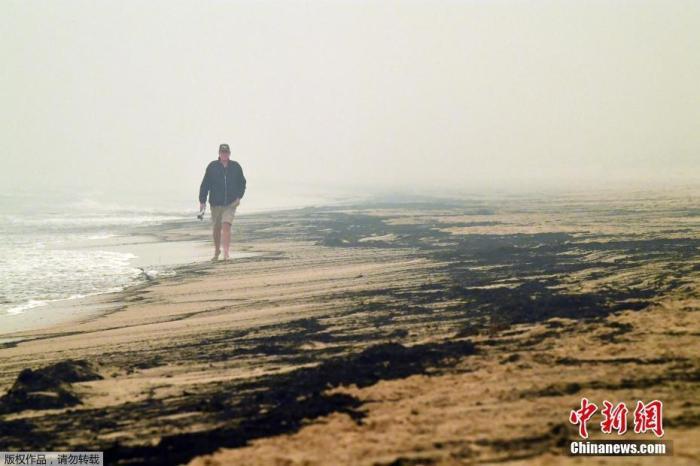 當地時間1月5日,澳大利亞新南威爾士州的梅里姆布拉,海灘被叢林大火的灰燼染黑。據當地媒體報道,自去年9月以來,全澳被火燒過的面積超過500萬公頃,山火中20多人喪生,數十人失蹤,1400多處住宅被燒毀,5億只動物死亡。
