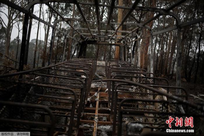 """澳大利亚一辆遭山火烧毁的公交车""""骨架""""。"""