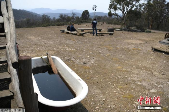 当地时间1月12日,澳大利亚库玛(Cooma)附近的一处民居旁,一只储物盆里落满了被灰烬污染成褐色的雨水。据介绍,盆里的雨水还散发出一股浓烟味。自2019年9月初火灾开始以来,这场大火已造成至少27人死亡,2000多座房屋被毁,烧毁的土地面积相当于一整个韩国,对生态环境造成严重破坏。