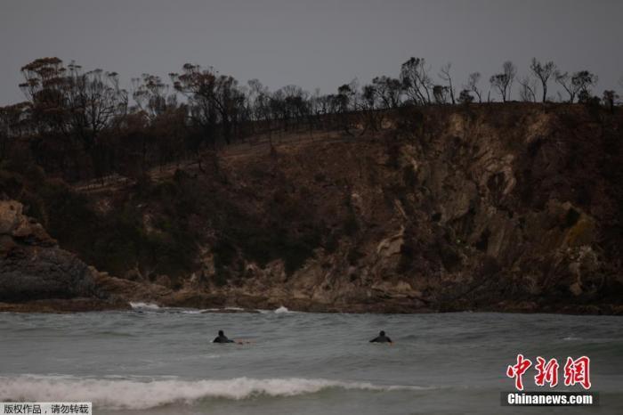 麦肯齐海滩也被山火烧毁,不过这并没有冲浪者的兴致。