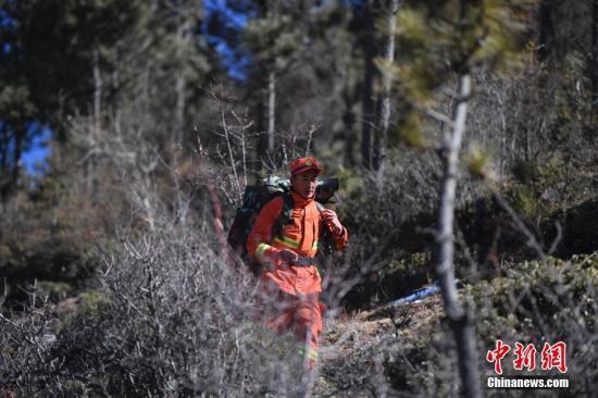 森林消防员上山入林进行训练。中新社记者 刘冉阳 摄