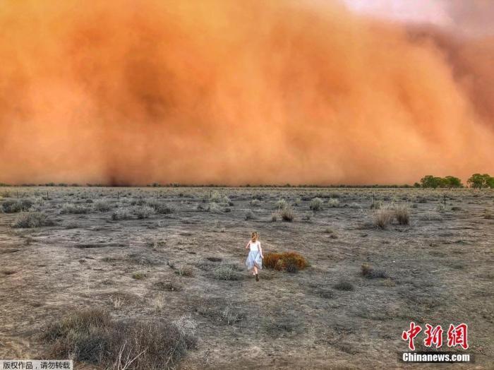 澳大利亚林火还在燃烧,极端天气又接踵而至。近日,大规模沙尘暴袭击了新南威尔士州西部的多个内陆城镇。沙尘遮天蔽日,现场画面触目惊心。当地民众说,夜晚还没降临,整座城镇便陷入黑暗之中。