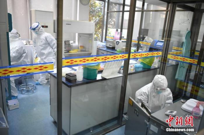 """2月6日,昆明市第一人民医院(南区)的医务工作者进行新型冠状病毒核酸检测。当日,记者探访昆明医院的战""""疫""""一线。中新社记者 刘冉阳 摄"""