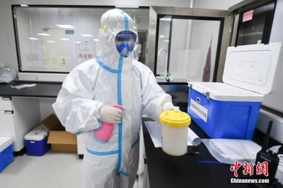 资料图:医务人员在专业的密闭房间内对样本进行核酸检测。 中新社记者 杨华峰 摄