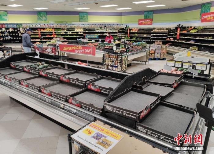 当地时间3月17日,美国旧金山湾区圣马特奥县一家超市的多种商品供不应求。<a target='_blank' href='http://www.chinanews.com/'>中新社</a>记者 刘关关 摄