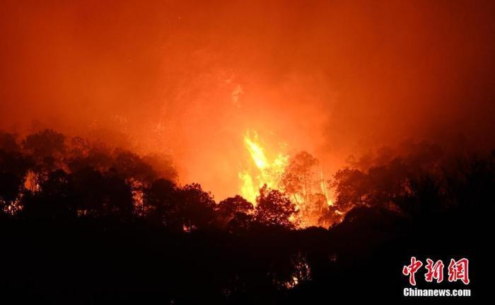 3月31日深夜,四川西昌市森林火灾泸山景区火点借风力复燃,大火逼近光福寺、学校和居民区,来自成都、资阳、雅安、眉山等地增援的消防员们全力阻止大火蔓延。图为泸山景区火点复燃的树冠火。中新社记者 刘忠俊 摄