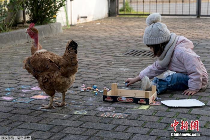 """随着最新的封城延期信息的公布,像Marzio Toniolo这样的生活在疫情""""红区""""的意大利人还要继续过着""""安分""""的生活。图为比安卡和家里新添的宠物——公鸡玩耍。"""