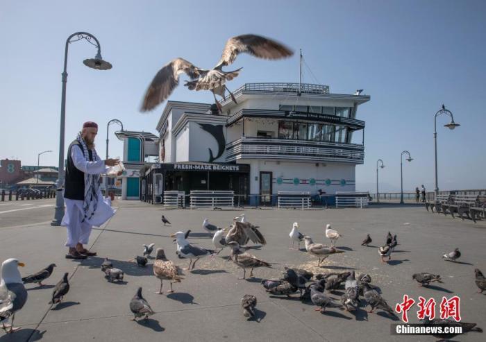 當地時間4月12日,美國舊金山市民在漁人碼頭喂鳥。<a target='_blank' href='http://www.toancapba.com/'>中新社</a>記者 劉關關 攝