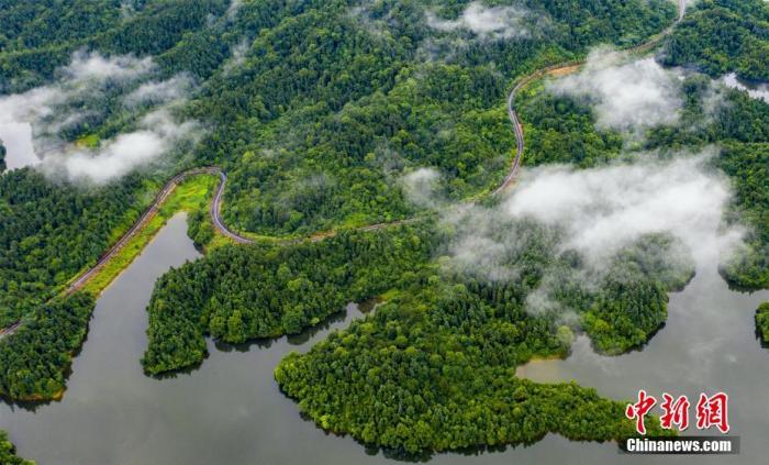 两部门印发总体规划:全面加强生态保护和修复工作图片