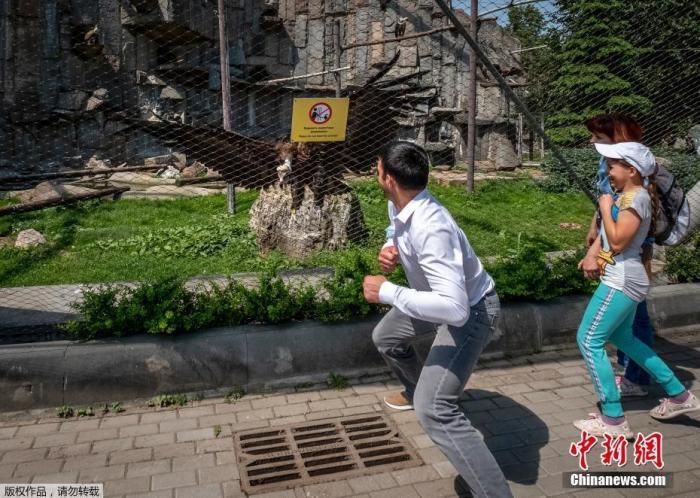 当地时间6月16日,俄罗斯莫斯科动物园重新开放,游客在动物园内参观。