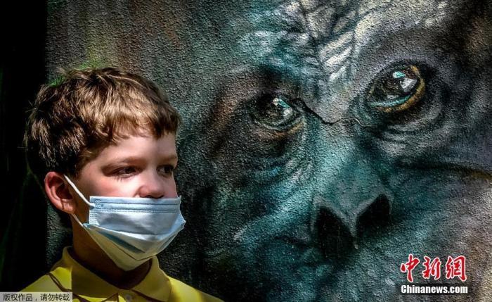 资料图:当地时间6月16日,俄罗斯莫斯科动物园重新开放,一名戴口罩的男孩儿站在动物壁画前。