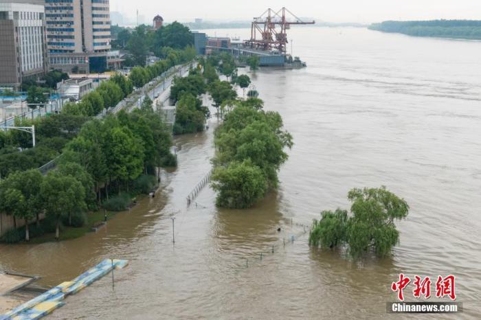 7月7日,受上游来水影响,长江南京下关段水位持续上涨。中新社记者 泱波 摄