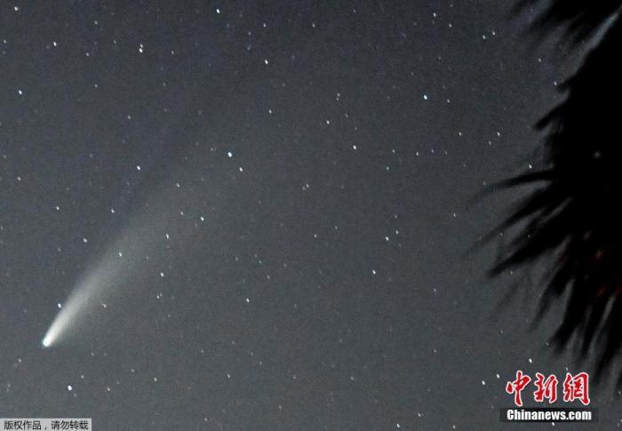 原料图:当地时间7月19日,美国佛罗里达州,Neowise彗星出现在当地夜空。