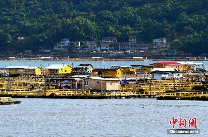 8月3日,福建省福鼎市沙埕港渔民们在台风来临前上岸避风。张斌 摄