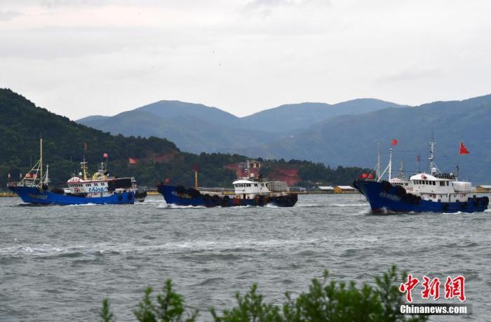 """8月4日,台风""""黑格比""""过后,各类回港避风的渔船从福建省福鼎市沙埕港驶出。 张斌 摄"""