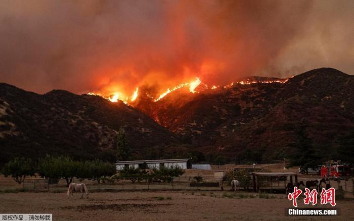 当地时间7月31日下午起,加利福尼亚州南部的河滨县樱桃谷燃起大火。当地目前至少有2600栋民宅、近8000名居民被命令疏散。