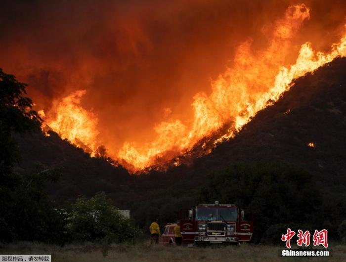 資料圖:8月4日消息,美加州南部發生山火,馬文豪,逾千名消防員試圖控制火勢。