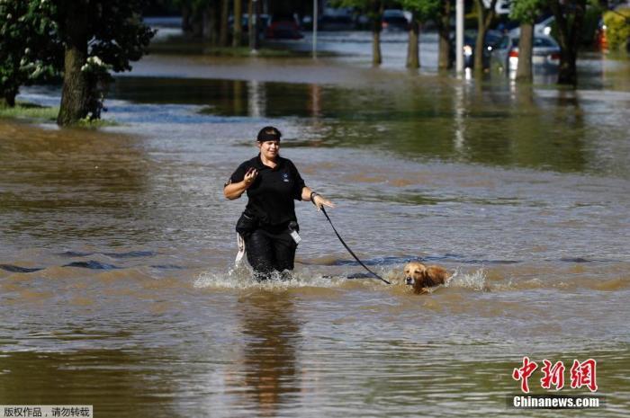 资料图:风暴袭击美国,费城市民在过膝的积水中遛狗。