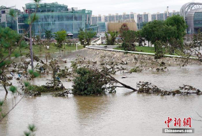 8月8日,首尔盘浦汉江公园内,多处步道、车道、停车场等被淹。连日暴雨致韩国首尔汉江水位猛增,附近部分道路、公园被淹。中新社记者 曾鼐 摄