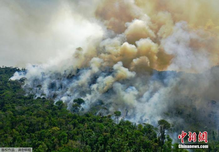 巴西潘塔纳尔湿地8月记录近6000起火灾 创史上第二高图片