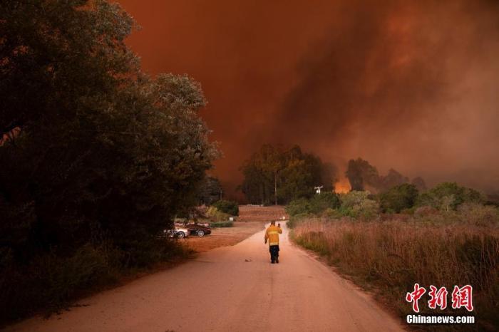圣马特奥县和圣克鲁斯县交界山区的一场大火正迅速蔓延,一名参与灭火的人员用对讲机与同伴沟通。 /p中新社记者 刘关关 摄