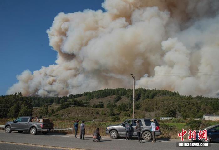 圣马特奥县和圣克鲁斯县交界山区的一场大火正迅速蔓延,几名运营农场的居民紧盯着火势的走向,为农场的命运担忧。/p中新社记者 刘关关 摄