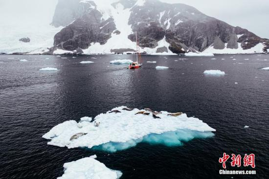 Antarctic ice melting faster, say scientists