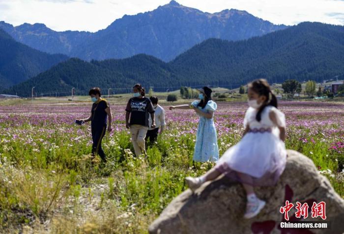 资料图:游客游玩赏花。 <a target='_blank' href='http://www.chinanews.com/'>中新社</a>记者 刘新 摄