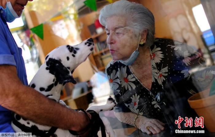 当地时间9月2日,西班牙巴塞罗那,一家养老院将老人推到玻璃窗前与前来探望的亲朋好友见面。图为一名老人隔窗亲吻宠物狗。