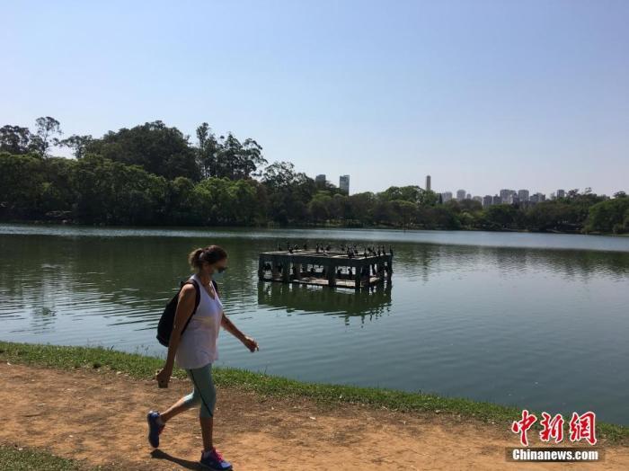 当地时间9月4日,巴西圣保罗,一名妇女在市内最大的伊比拉普埃拉公园行走。随着新冠疫情日趋减缓,近期巴西圣保罗市各大公园的游人渐多。据巴西卫生部公布的数据,截至4日20时,巴西累计新冠肺炎确诊病例超过409.2万例,累计死亡超12.5万例。其中,圣保罗州确诊病例逾84.5万例、死亡逾3.1万例。 中新社记者 莫成雄 摄