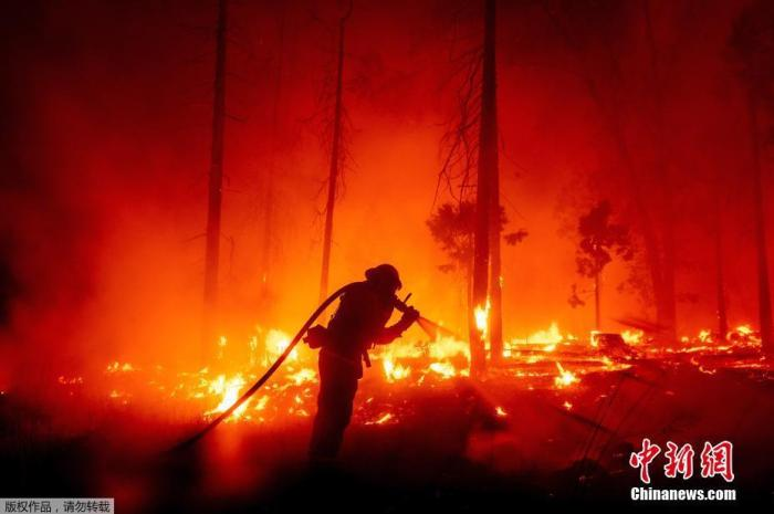 美加州山火肆虐已致8人丧生 逾220万英亩土地被烧图片