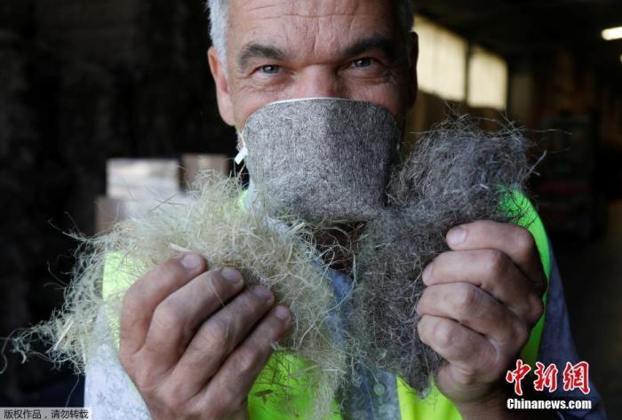 资料图:当地时间9月10日,法国Lezinnes,随着随着新冠肺炎疫情的预防进入常态化,法国一家企业开始自己动手种植麻,并利用麻纤维制作口罩。